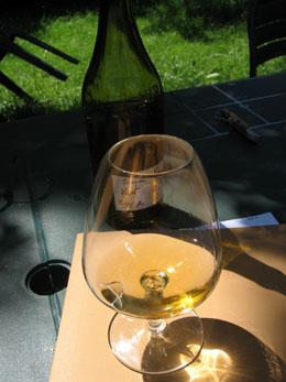 0801 vin.jpg