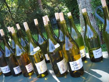 0801 vins.jpg