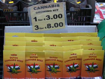 0805 cannabis.jpg