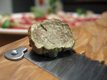 1023 truffe blanche.jpg