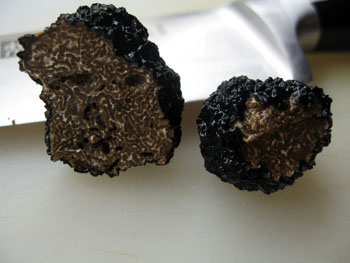 1212 truffe noire.jpg